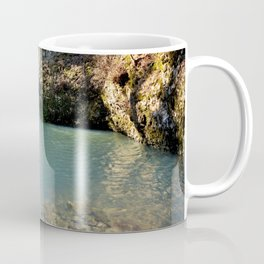 Alone in Secret Hollow with the Caves, Cascades, and Critters, No. 2 of 21 Coffee Mug