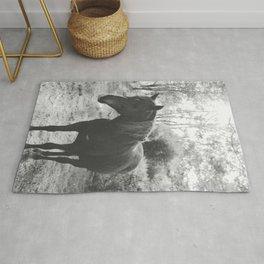 Horse VI _ Photography Rug