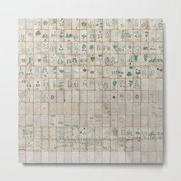 The Complete Voynich Manuscript - Natural Metal Print