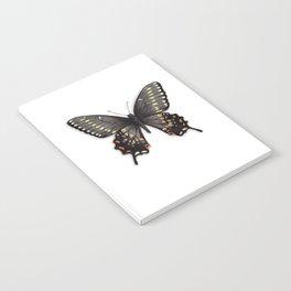 Butterflies: Kahli Butterfly Notebook
