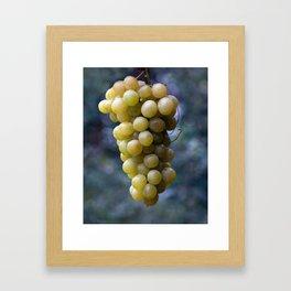 Harvest time ... 8508 Framed Art Print