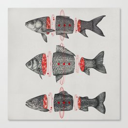Sashimi All Canvas Print