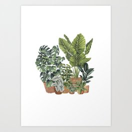 House Plants Watercolor Illustration 11 Art Print
