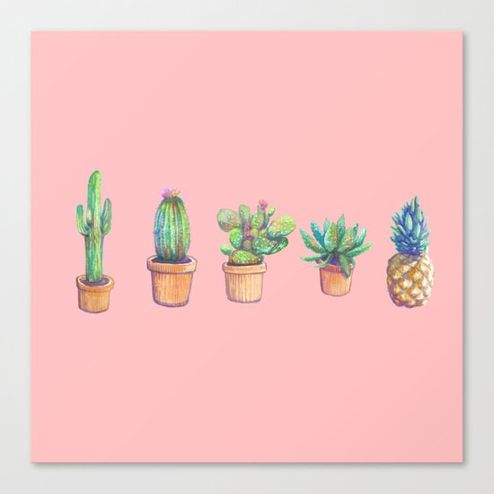 evolution cactus to pineapple pink version Canvas Print
