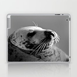 Howth Harbour Seal Laptop & iPad Skin