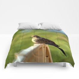 Beautiful Morning Dove Comforters