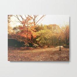 Autumn Sunlight - New York City Metal Print