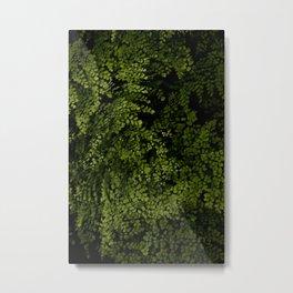 Small leaves Metal Print