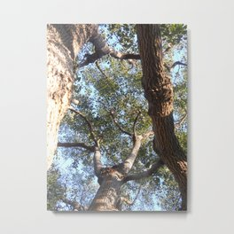 A Shattered Sky Metal Print