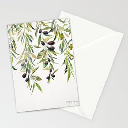 Olive Branch Watercolor  Stationery Cards