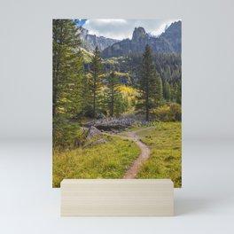 Telluride Waterfall Hike, Cairn City Mini Art Print