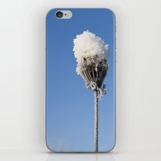 Snow Blossom iPhone & iPod Skin