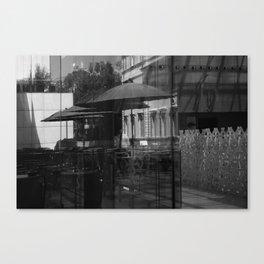 self reflection Canvas Print