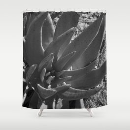 Reclamo al sol... serie 3/5 Shower Curtain