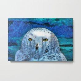 Snow winter owl Metal Print