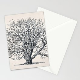 Tree Sketch 51 - Autumn Dry Tree Stationery Cards