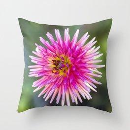 Dahlia In The Garden / 41 Throw Pillow