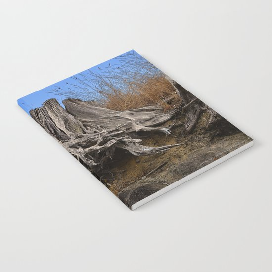 WEATHERED STUMP AND ROOTS ON BEACHSIDE BLUFF Notebook