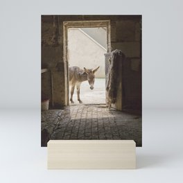 Cute Burro Looking Inside a Doorway Mini Art Print
