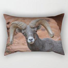 Desert Bighorn, Valley of Fire - IV Rectangular Pillow