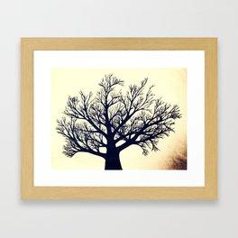 Tree Dark Framed Art Print