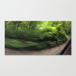 Pisgah National Forest on 197 - NC Canvas Print