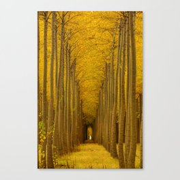 Tree Soldiers Canvas Print
