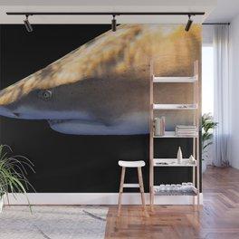 Lemon Shark Backdrop Wall Mural