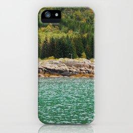 nature - colours iPhone Case