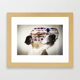 JACK RUSSELL DOG WITH UNION JACK SUNGLASSES Framed Art Print
