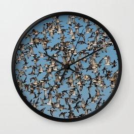 Wintering Ducks in Flight Wall Clock