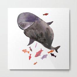False killer whale Metal Print