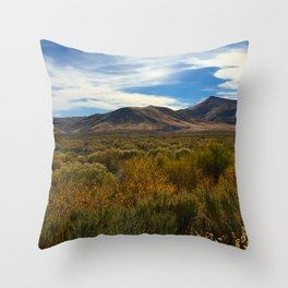High Desert 2 Throw Pillow