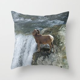 Big Horn Sheep & Rocky Mountain Waterfall Throw Pillow