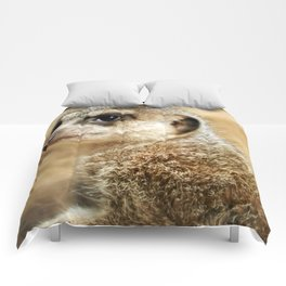 Meerkat (Omaha's Henry Doorly Zoo) Comforters
