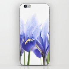 Bue Iris 2 iPhone & iPod Skin