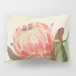 Pink Ice Pillow Sham
