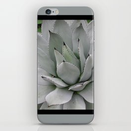 In the Conservatory iPhone Skin
