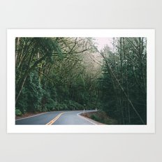drive through the woods Art Print
