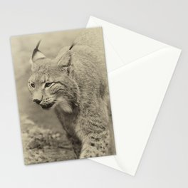 beautiful lynx Stationery Cards
