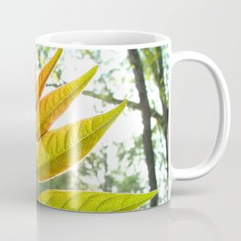 Watercolor Bush, Part, Staghorn Sumac 02, Eno River, North Carolina Coffee Mug