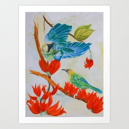 Bluewinged leafbirds and Flame of the forest Art Print