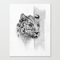 leopard Canvas Prints featuring Leopard by Anna Tromop Illustration
