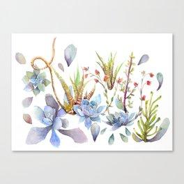 A Succulent Mixture Botanical Design Canvas Print