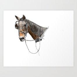 Buggy Horse Art Print