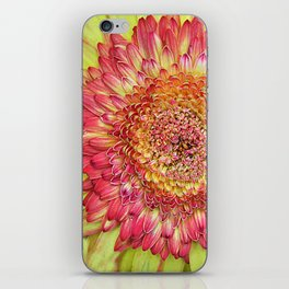 Flower yallow pink iPhone Skin