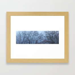 Trees in Fog Framed Art Print