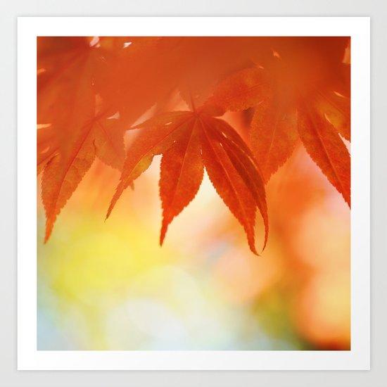 Autumnal tints Art Print