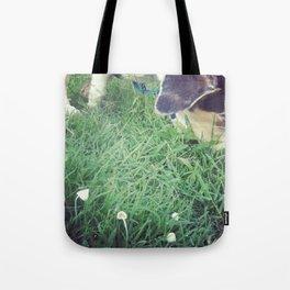 Mako meandering through mushrooms Tote Bag