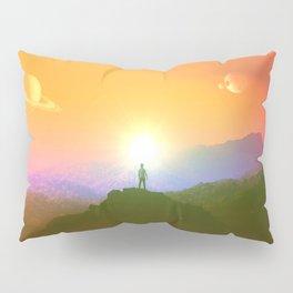 Paint Me A Picture Pillow Sham